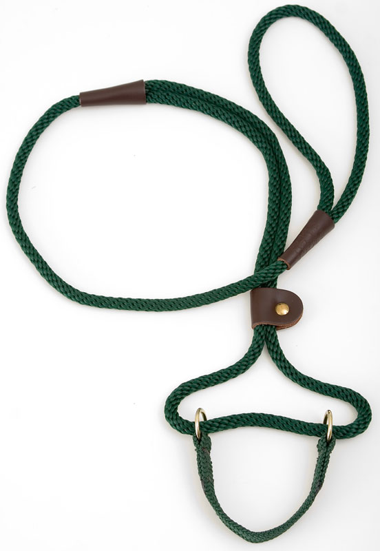 "Mendota Pet Dog Walker: Green, 3/8"" x 4'"