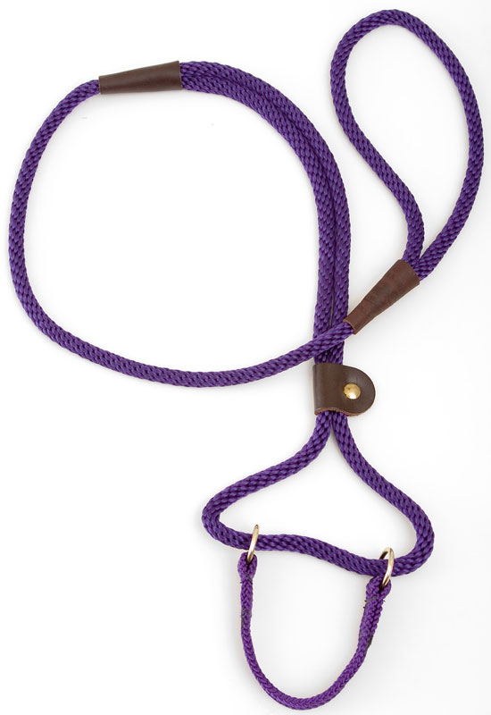 "Mendota Pet Dog Walker: Purple, 3/8"" x 4'"
