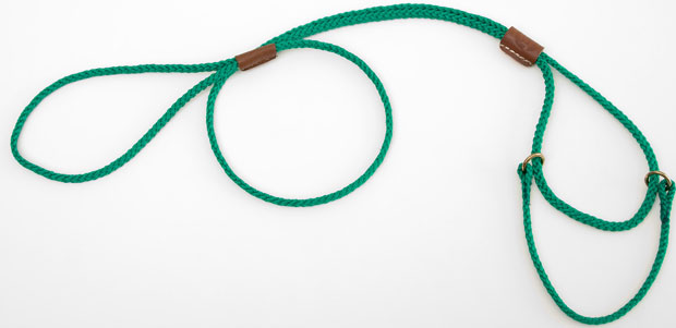 "Mendota Pet Martingale Show Lead: Kelly Green, Large 12"", 1/8"" x 40"""