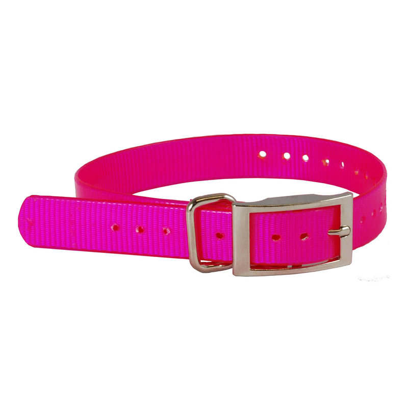 "The Buzzard's Roost Collar Strap 1"" Pink 1"" x 24"""