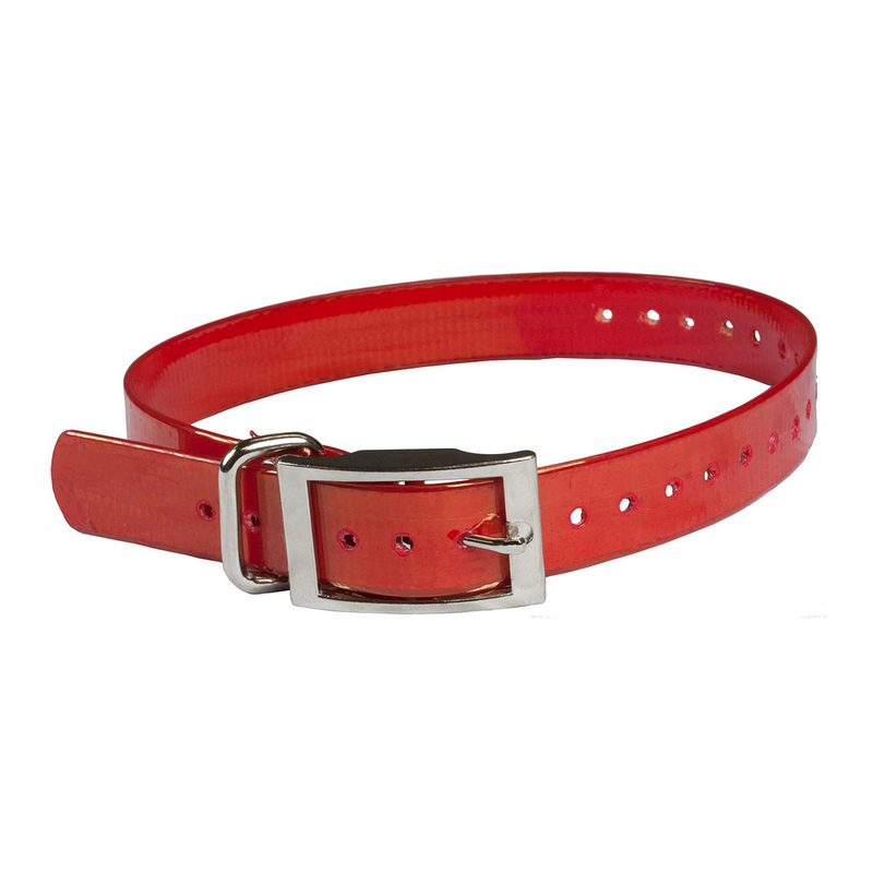 "The Buzzard's Roost Collar Strap 1"" Red 1"" x 24"""