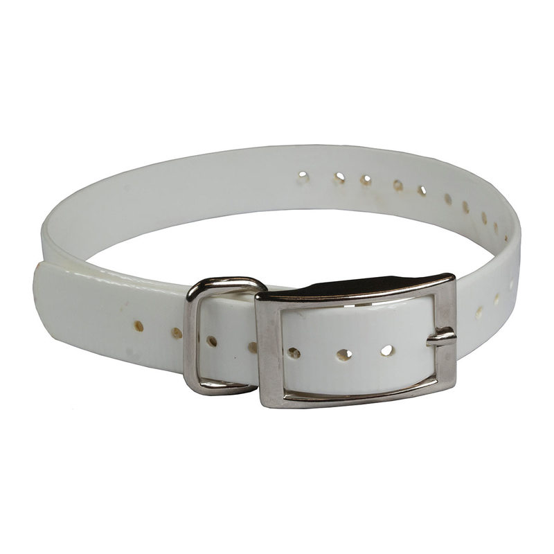 "The Buzzard's Roost Collar Strap 1"" White 1"" x 24"""