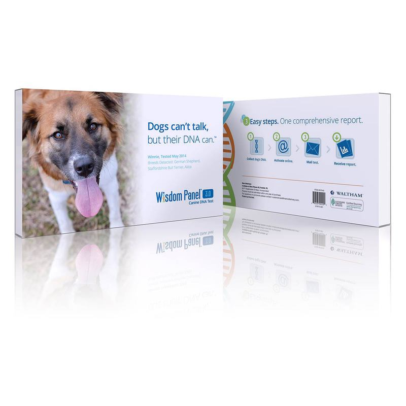 Mars Veterinary Wisdom Panel 3.0 Canine DNA Test