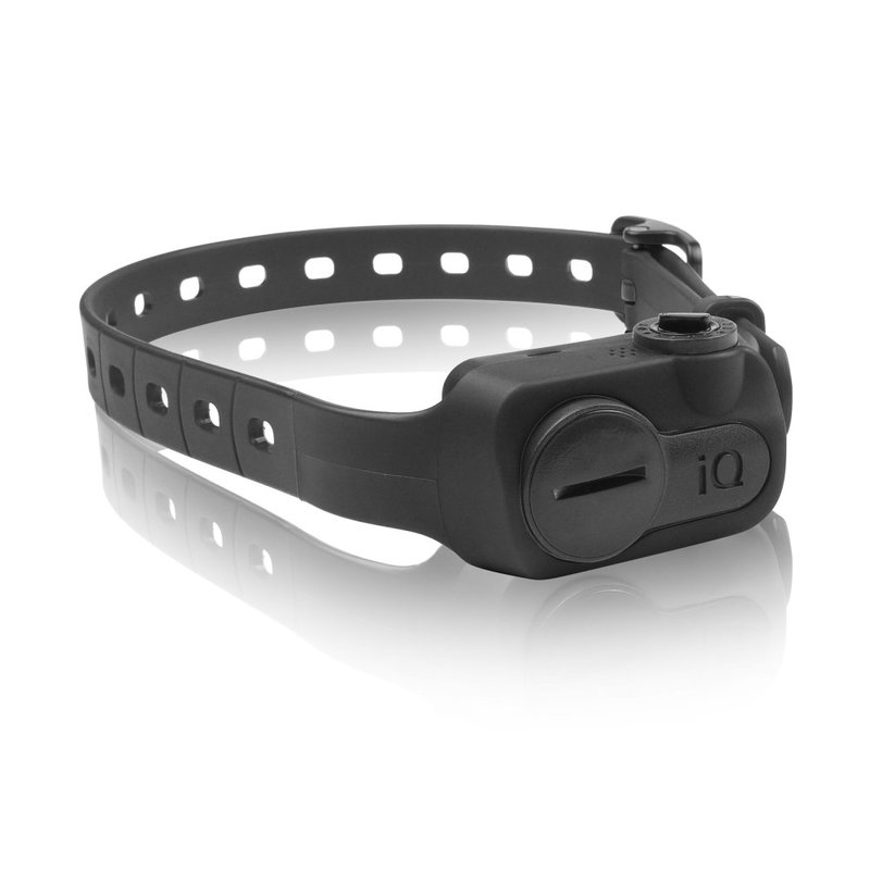 Dogtra iQ No Bark Collar Black