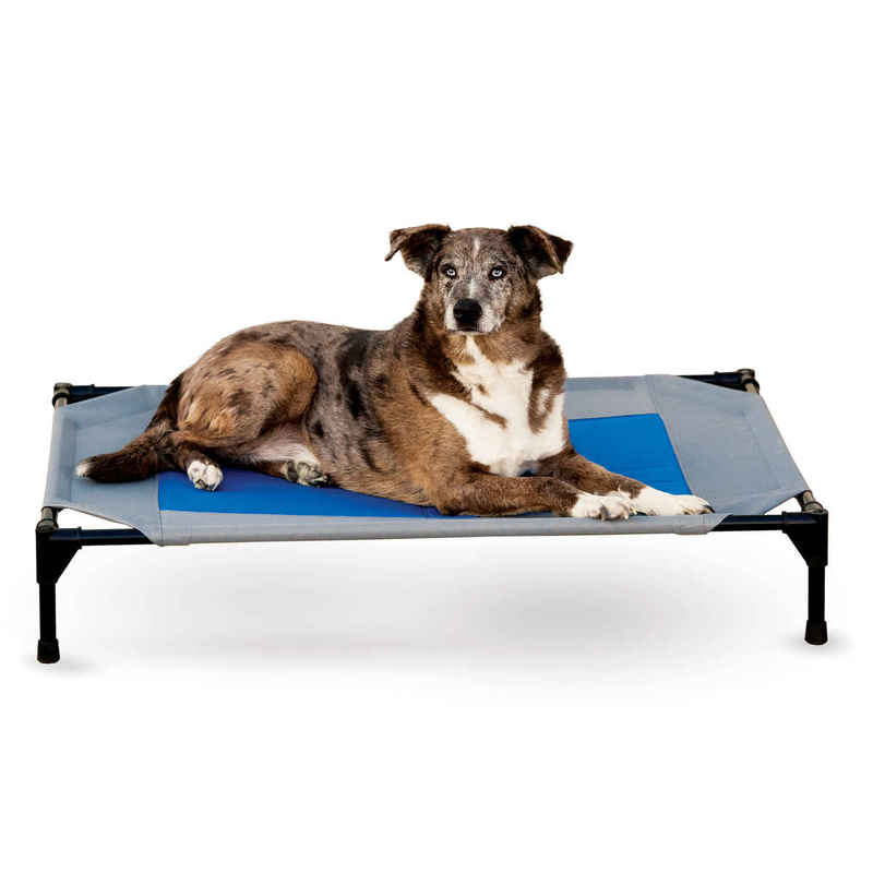 "K&H Pet Products Coolin' Pet Cot Large Gray / Blue 30"" x 42"" x 7"""