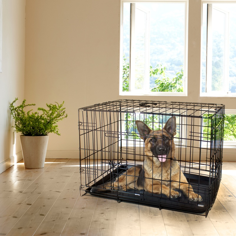 "30"" MEDIUM Dual-Door Folding Pet Crate with Removable Liner"