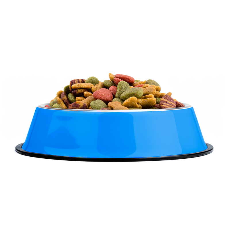16oz. Blue Stainless Steel Dog Bowl