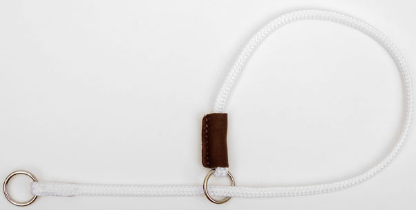 "Mendota Pet Show Slip Collar: White, 1/8"" X 20"""