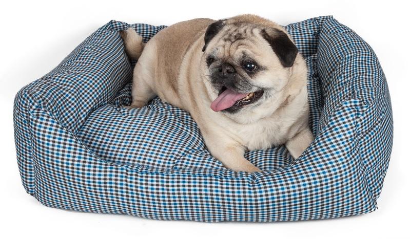 Pet Life Wick-Away Nano-Silver and Anti-Bacterial Water Resistant Rectangular Dog Bed: Medium ...  Pet Life Wick-A...