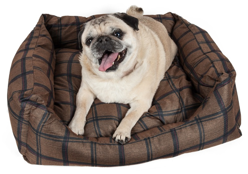 Pet Life Wick-Away Nano-Silver and Anti-Bacterial Water Resistant Rectangular Dog Bed: Small, Dark Brown