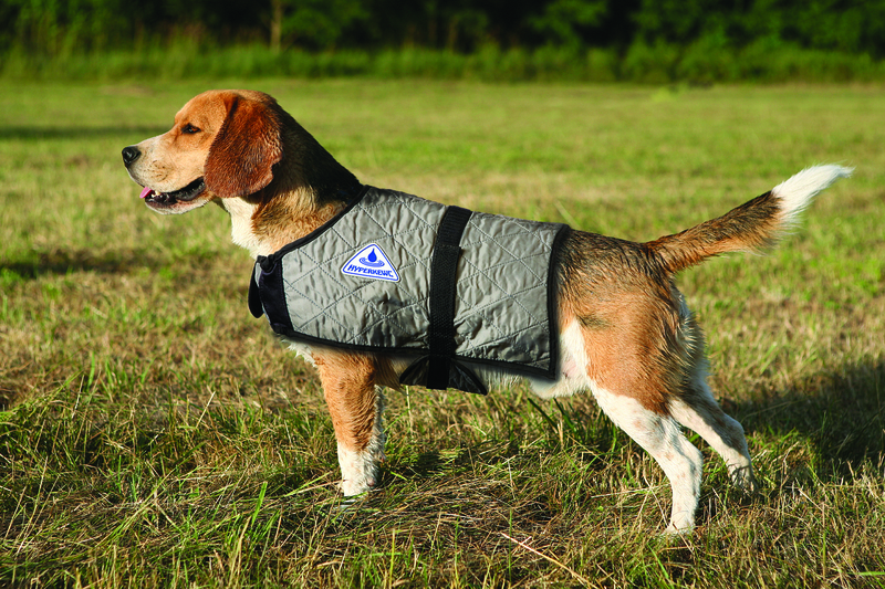 HyperKewl Evaporative Cooling Dog Coat: Silver, XS