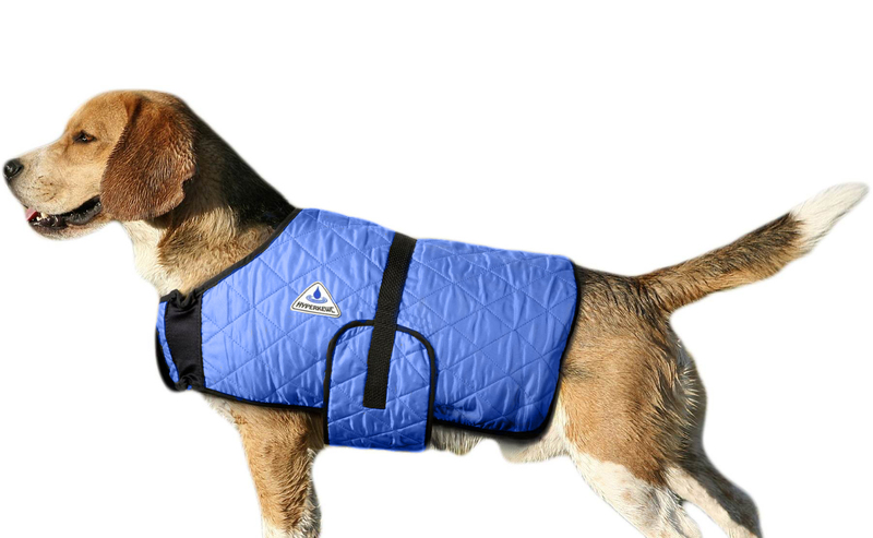 HyperKewl Evaporative Cooling Dog Coat: Blue, M