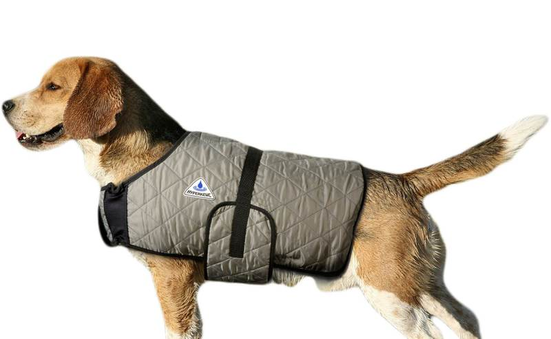 HyperKewl Evaporative Cooling Dog Coat: Silver, M