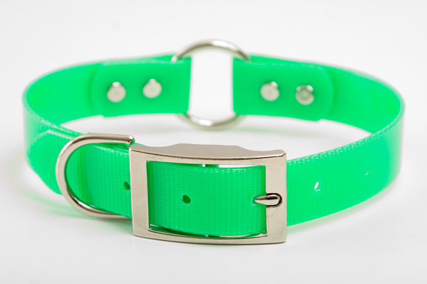 "Mendota Pet Safety Collar: Green, 1"" x 16"""