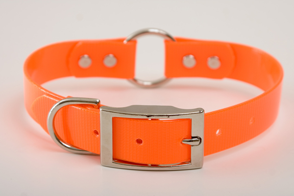 "Mendota Pet Safety Collar: Orange, 1"" x 24"""