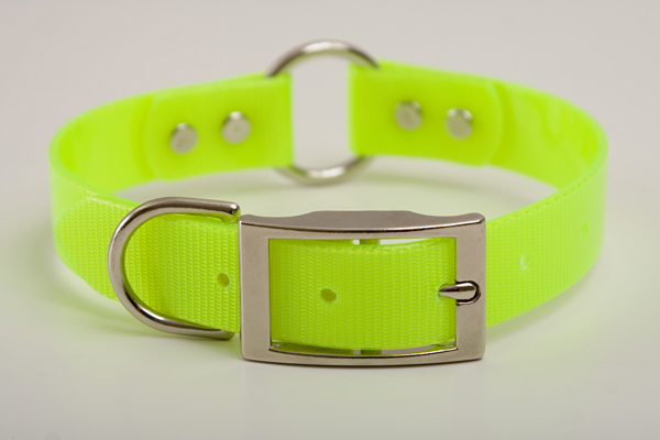 "Mendota Pet Safety Collar: Yellow, 1"" x 22"""