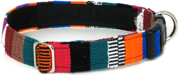 Color Pet™ Maya Custom Personalized Multi 1 Collar: Medium Wide