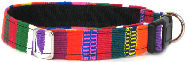 Color Pet™ Maya Custom Personalized Multi 2 Collar: Extra Large