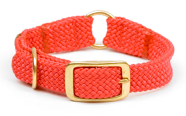 "Mendota Pet Center Ring Collar: Red, 1""W Up to 18"""
