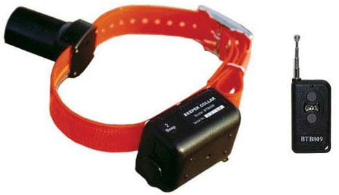 D.T. Systems Baritone Dog Beeper Collar With Remote Orange