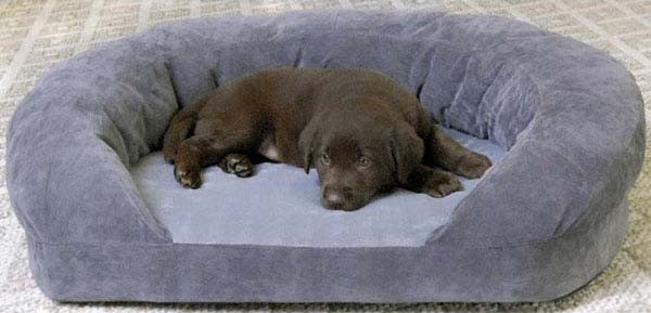 "K&H Pet Products Ortho Bolster Sleeper: Small, Gray Velvet, 20"" x 16"" x 8"""
