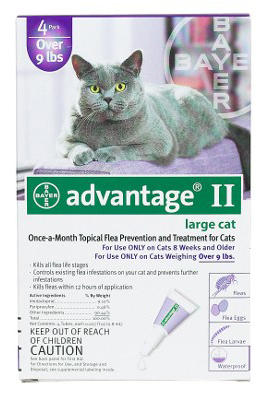 Advantage Flea Control for Cats and Kittens Over 9 lbs: 6 Month Supply