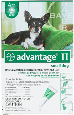Advantage Flea Control for Dogs And Puppies: 11-20 Pound, 6 Month Supply