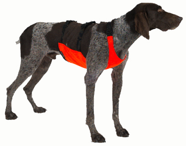 Mendota Pet Skid Plate: Orange, XL