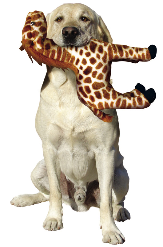 Mighty Toy Safari: Giraffe, Gina
