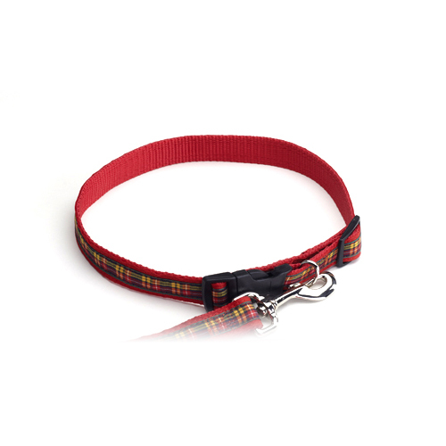 Color Pet™ Casey & Eddy Buchanan/Red Collar: Large
