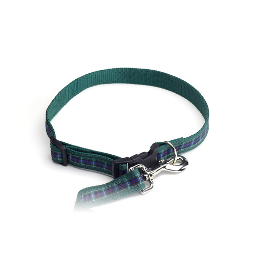 Color Pet™ Casey & Eddy Scottish/Green Collar: Medium Wide