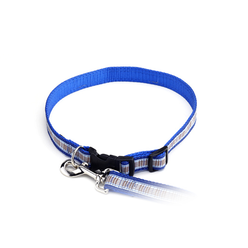 Color Pet™ Casey & Eddy Natural/Royal Collar: Medium Wide