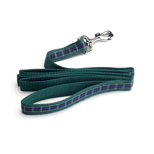 Color Pet™ Casey & Eddy Scottish/Green Leash: Extra Large