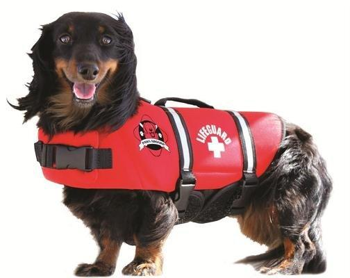Paws Aboard Dog Life Jacket: Red, Neoprene, Large