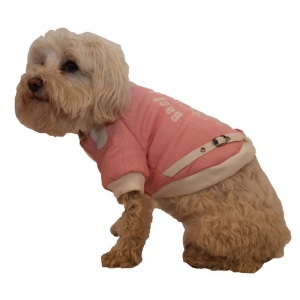 Pet Life Varsity-Buckled Collared Pet Coat: Small, Pink/White