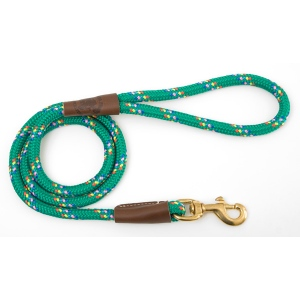 "Mendota Snap Leash: Kelly Conf, 1/2"" x 4'"