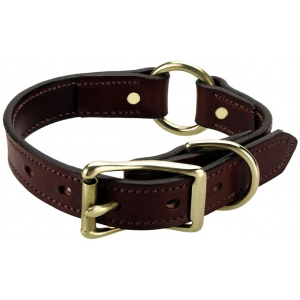 "Mendota Wide Hunt Collar: Chestnut, 1"" x 20"""
