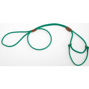 "Mendota Pet Martingale Show Lead: Kelly Green, Small 8"", 1/8"" x 40"""