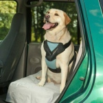 Bergan Dog Travel Harness Large Blue