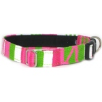Color Pet™ Maya Lumina Collar: Small