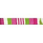 Color Pet™ Maya Lumina Leash: Small