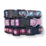 Color Pet™ Eli & Elouise Daisy Collar: Extra Large