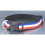Color Pet™ Eli & Elouise Independence Collar: Medium Wide