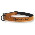 Color Pet™ Canvas Standard Collar: Medium Wide