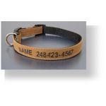 Color Pet™ Canvas Custom Collar: Medium