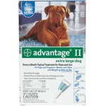 Advantage Flea Control for Dogs and Puppies: Over 55 Pound, 6 Month Supply