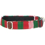 Color Pet™ Maya Custom Personalized Holiday Collar: Small