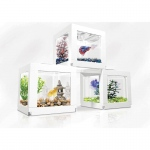 "BioBubble Stacking Kit for Deco Cubes 7"" x 9.5"" x 0.15"""