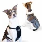 K&H Pet Products Travel Safety Pet Harness Large Black