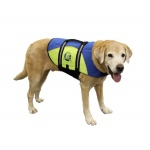 Paws Aboard Dog Life Jacket: Blue & Yellow, Neoprene, Large